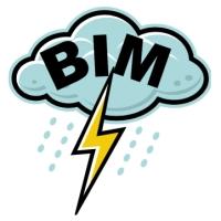 BIM in the cloud