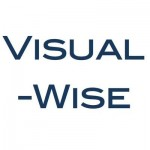 Visual-Wise logo